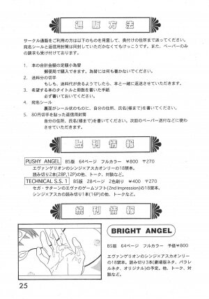 (C52) [System Speculation (Imai Youki)] TECHNICAL S.S. 1 2nd Impression (Neon Genesis Evangelion) - Page 26